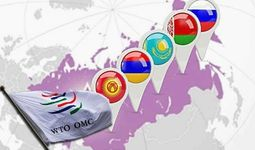 ВТО и ЕАЭС: перспективы сотрудничества