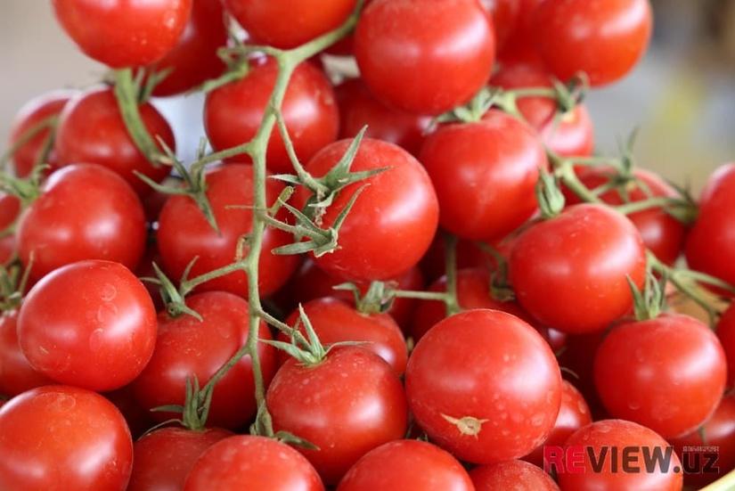 ITSV Farg'onada yetishtirilgan pomidor va qalampirning Rossiyaga olib kirilishi ta'qiqlanishi yuzasidan izoh berdi