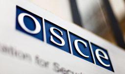 Парламентская ассамблея ОБСЕ направит в Узбекистан более 50 наблюдателей