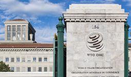 Узбекистан готовит в этом году новую встречу по переговорам о вступлении в ВТО
