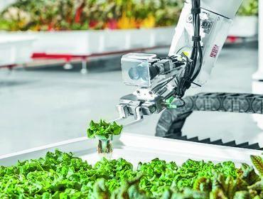 Глобальный тренд сельскохозяйственных стартапов