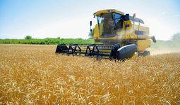 Майские цены на продовольствие достигли рекордных показателей за последнее десятилетие — ФАО