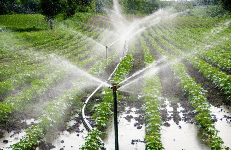 Для внедрения водосберегающих технологий орошения выделены субсидии