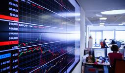 Роль фондового рынка в странах с переходной экономикой  в привлечении инвестиций