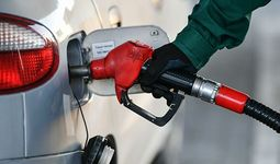 В Узбекистане акциз на алкоголь, бензин и газ не будет повышаться до конца года