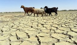 Узбекистан и Таджикистан получат $19 млн для адаптации к изменению климата