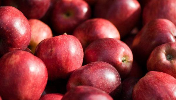 На рынок Узбекистана массово поступает яблоко из Кыргызстана