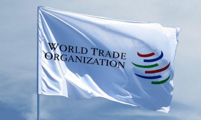 Укреплять позиции слабых секторов необходимо в процессе вступления в ВТО