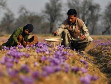 Всемирный банк начал консультации по экономическому развитию Афганистана