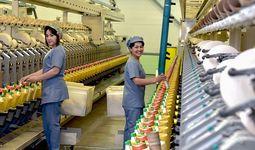 Правительство трудоустроит почти 89 тысяч безработных женщин