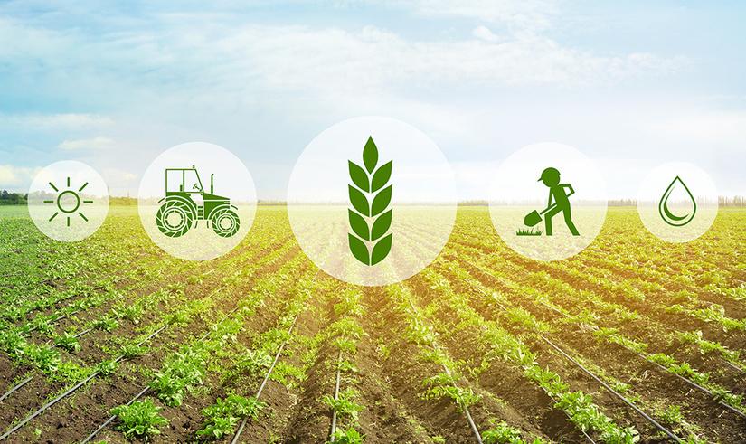 Узбекские инвесторы откроют в Казахстане совместное предприятие в сфере сельскохозяйственного машиностроения