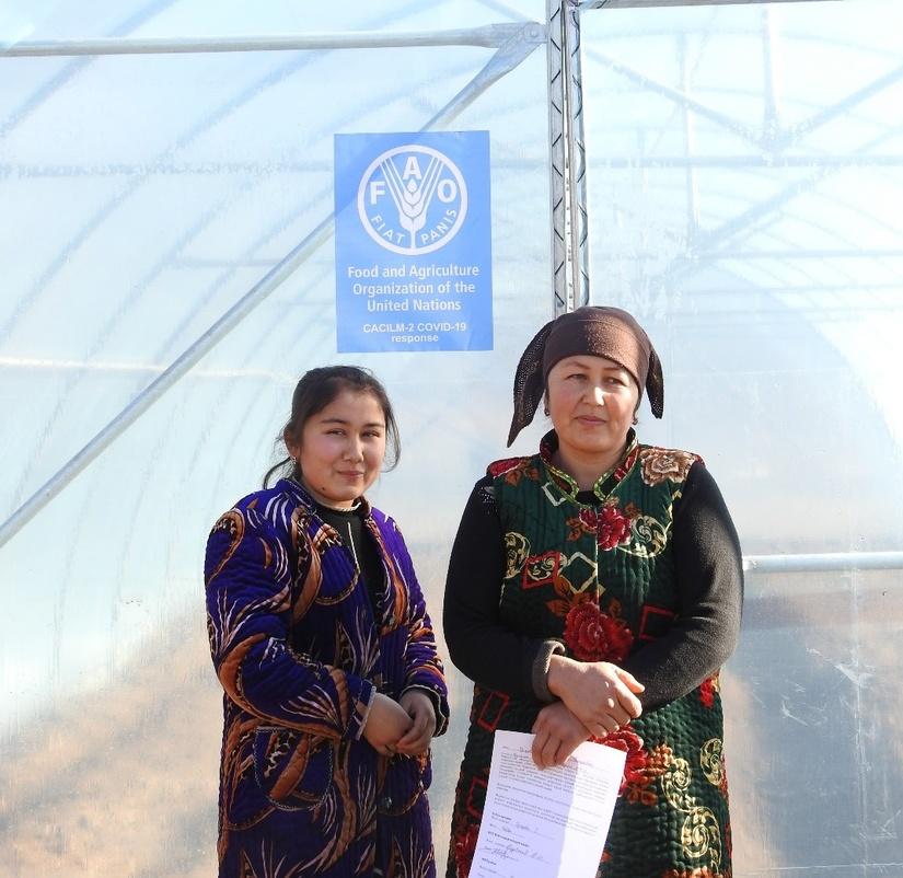 ФАО передала теплицы малообеспеченным семьям, занесённым в реестр «железная тетрадь» в Кашкадарьинской области