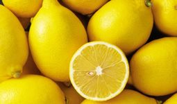O'zbekiston ilk bor Polsha va Tojikistonga limon eksport qildi