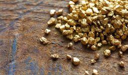 Канадская золотодобывающая компания заинтересована расширять свое присутствие в Узбекистане
