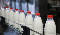 В 2020 году мировые цены на основные продукты питания оказались самыми высокими за последние три года – ФАО