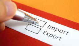 В Положение о валютном контроле по экспортно-импортным операциям внесли поправки