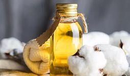 Антимонопольный комитет РУз усилил контроль над ценообразованием хлопкового масла