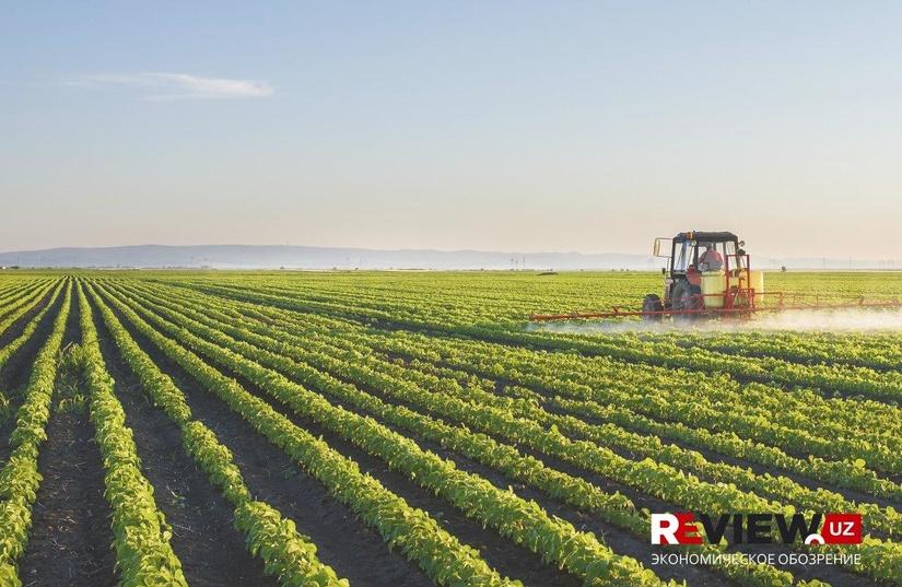 Комплекс аграрных реформ