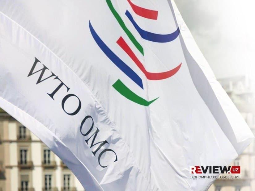 Сфера услуг в ракурсе вступления в ВТО