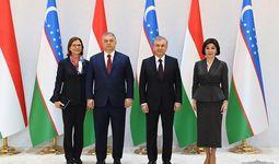 Обсуждены задачи вывода узбекско-венгерских отношений на уровень стратегического партнерства (+фото)