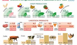 Dynamics of agricultural reforms (+ infographics)