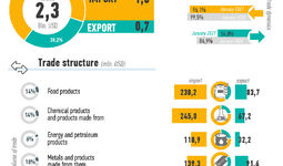 Infographics: Foreign trade of Uzbekistan (January 2021)