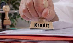 Как будут выделяться кредиты на обучение бизнесу
