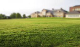 Как будет приватизирована земля, кому она дается и в каком размере?