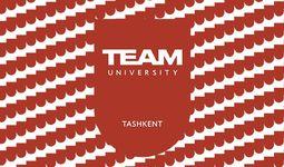 TEAM universiteti tashkil etildi