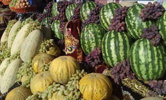 Большие возможности аграрного сектора Узбекистана