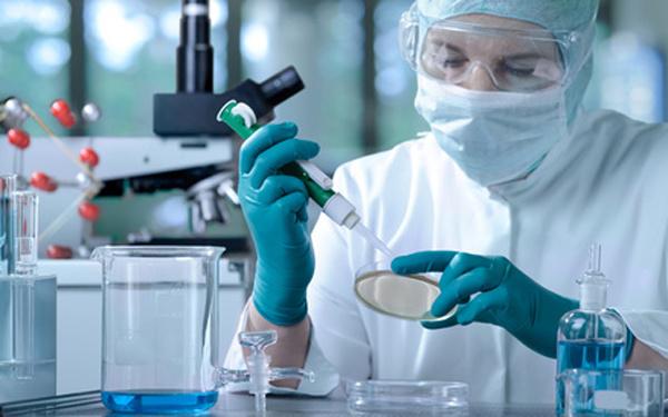 В Джизаке создается медицинский кластер