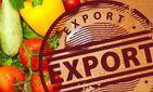 Экспортолди молиялаштириш учун компенсация ва кафилликлар тақдим этилади