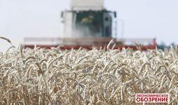 Рынок пшеницы. Стабильность, невзирая на пандемию