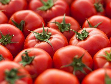 Таджикистан продолжает импорт узбекской плодоовощной продукции