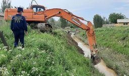 FVV: Zararlangan hududlarda to'plangan 70 ta uy hayvoni ko'mildi