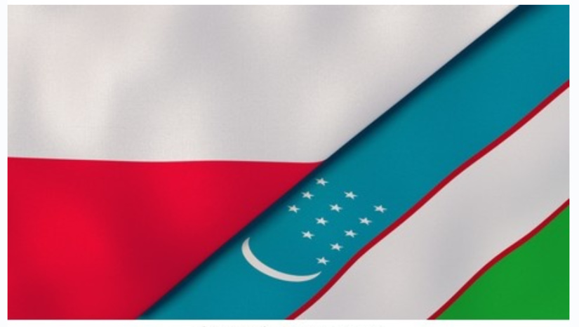 Poland interested in cooperation with Uzbekistan in field of geology