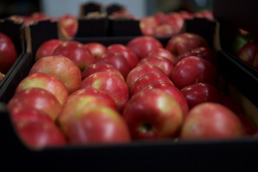 Коронавирус и цены на яблоко и концентрат – как они взаимосвязаны и что может произойти?