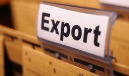 Кабмин утвердил правила страхования для узбекских экспортеров