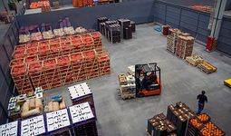 В Узбекистане начинают работу региональные экспортные штабы