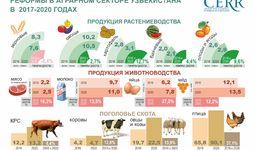 Сельскохозяйственные реформы  в динамике (+инфографики)