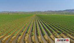 Стратегические приоритеты сельского хозяйства