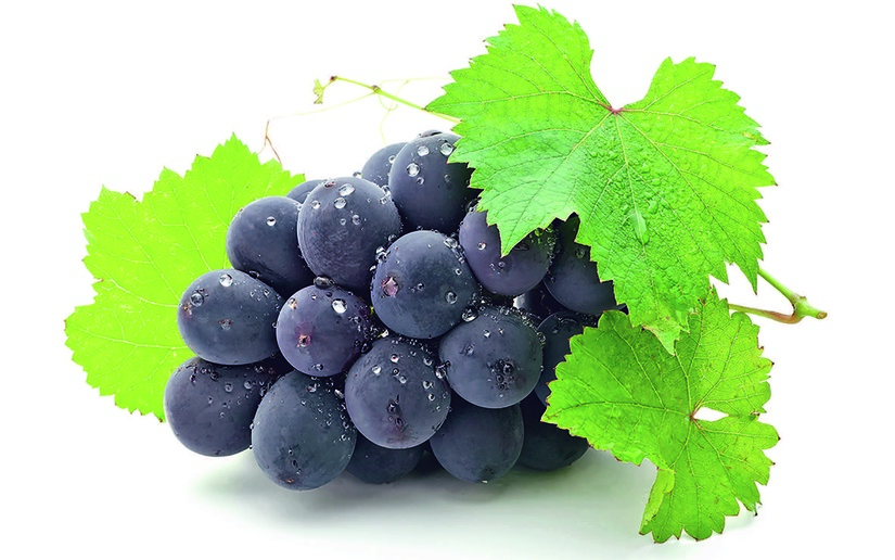 Виноградные рынки