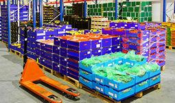Сколько продовольствия хранится на таможенных складах Узбекистана?