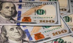 Iyul oyining so'nggi haftasida pastlagan dollar kursi avgust oyida yana ko'tarildi