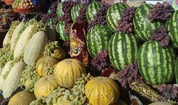 ВБ инвестирует в сельское хозяйство Узбекистана $124 млн