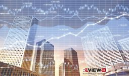 В ноябре деловая активность в Узбекистане умеренно увеличилась