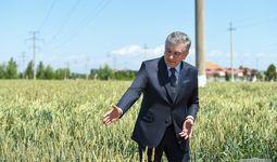 Shavkat Mirziyoyev: Fermer dalaga reja uchun emas, daromad uchun kirishi kerak (foto)
