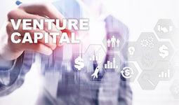 Поддержкой стартапов займутся венчурные фонды