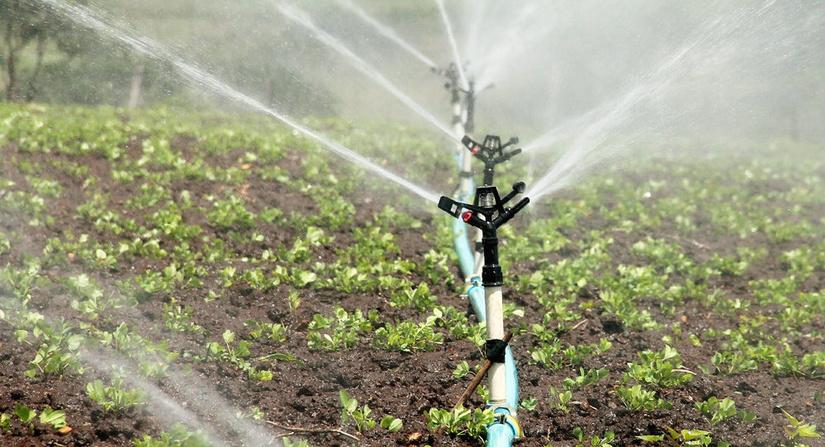 430 минг гектар майдонда сувни тежайдиган технологиялар жорий қилинади