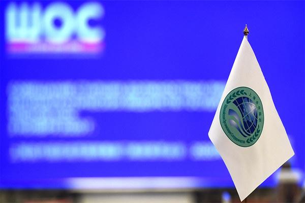 Эксперт: На основе опыта некоторых стран ШОС в Узбекистане ликвидация бедности определена в качестве приоритетной задачи социально-экономического развития